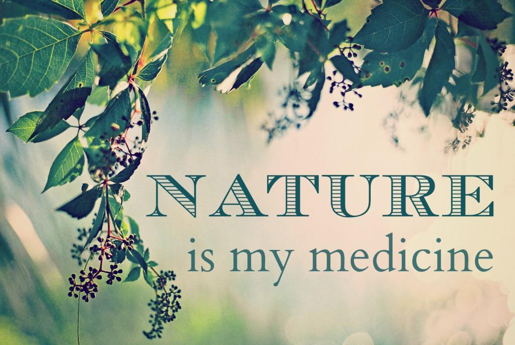 Natuurlijke geneesmiddelen Leiden